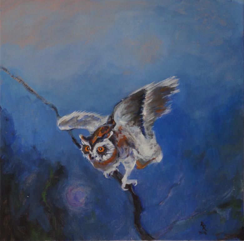 Owl Guide